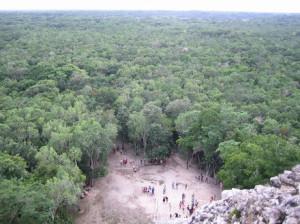 Coba: Blick in den Urwald